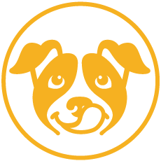 maxxidog tips and advice about canine health