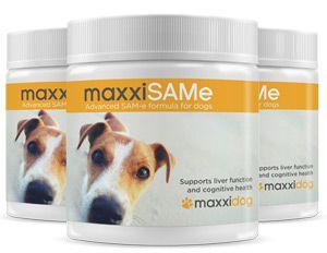 maxxiSAMe advanced SAM-e formula for dogs