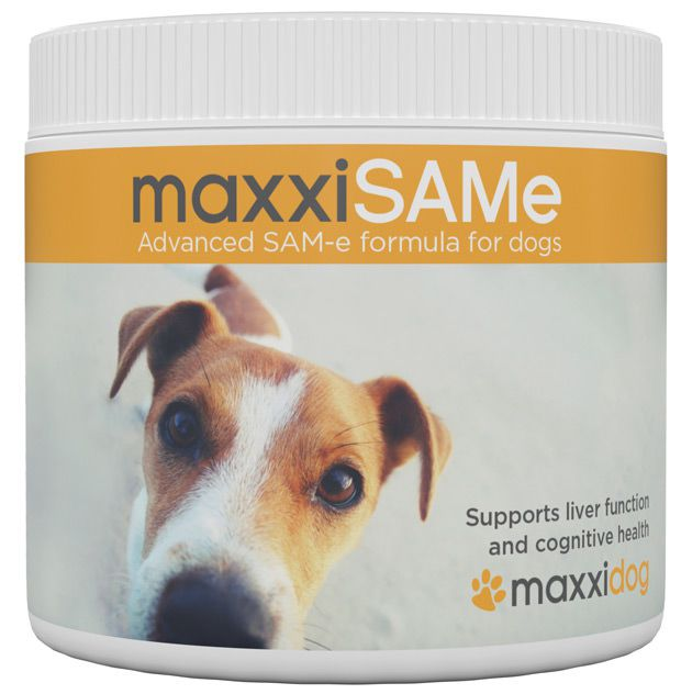The benefits of maxxiSAMe SAM-e supplement for dogs