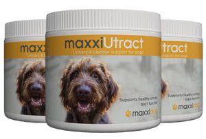 Bottles of maxxiUtract urinary and bladder support for dogs from maxxipaws