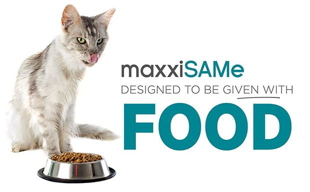 maxxiSAMe SAM-e for cats given with food