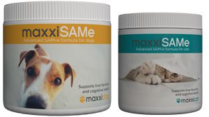 maxxiSAMe liver and cognitive support for dogs and cats