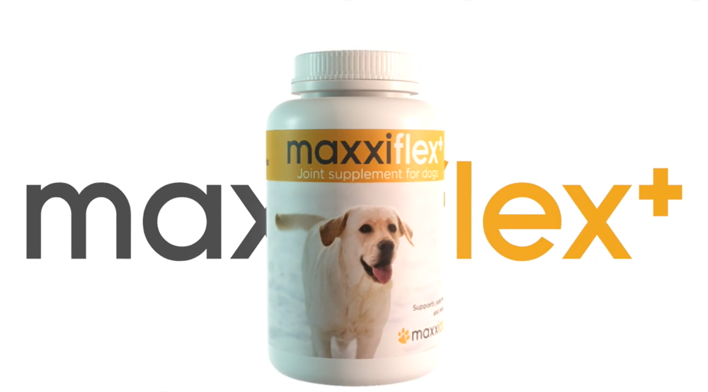 Bottle of maxxiflex+ hip and joint support for dogs