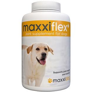 maxxiflex+ for dogs
