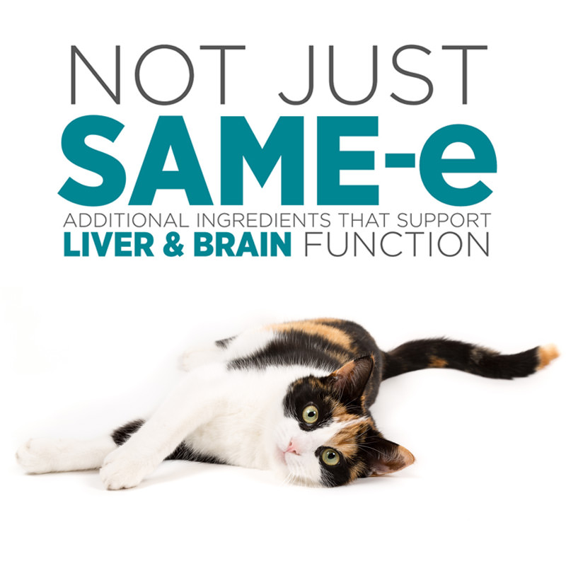 maxxiSAMe best ingredients for feline liver and brain health