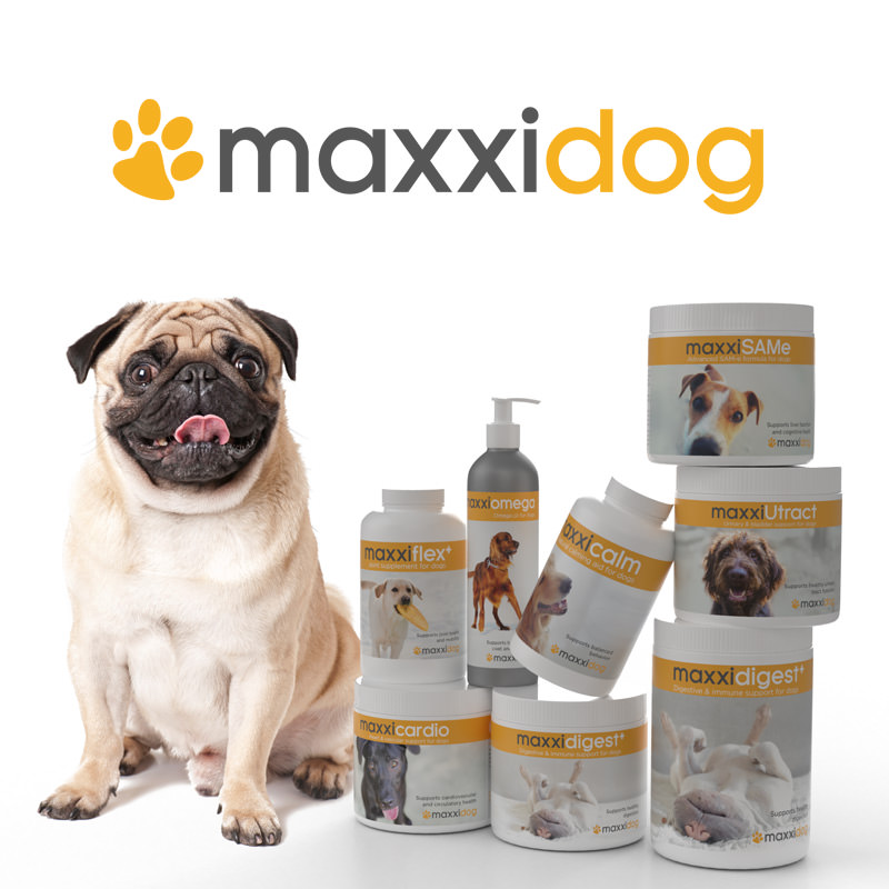 Bottles of maxxidog health supplements for dogs from maxxipaws