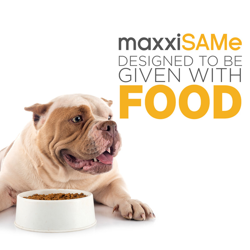 maxxiSAMe liver supplement for dogs given with food
