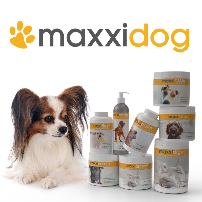 maxxidog health supplements from maxxipaws
